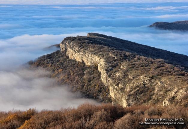 Венеца и мъглата